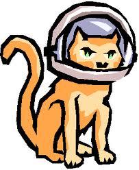 cat wearing space helmet